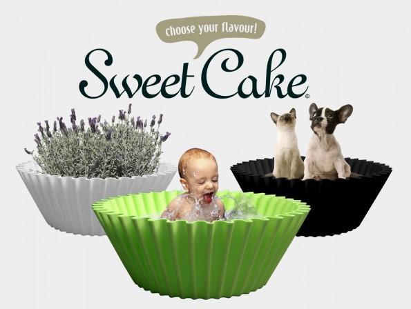 sweet cake all