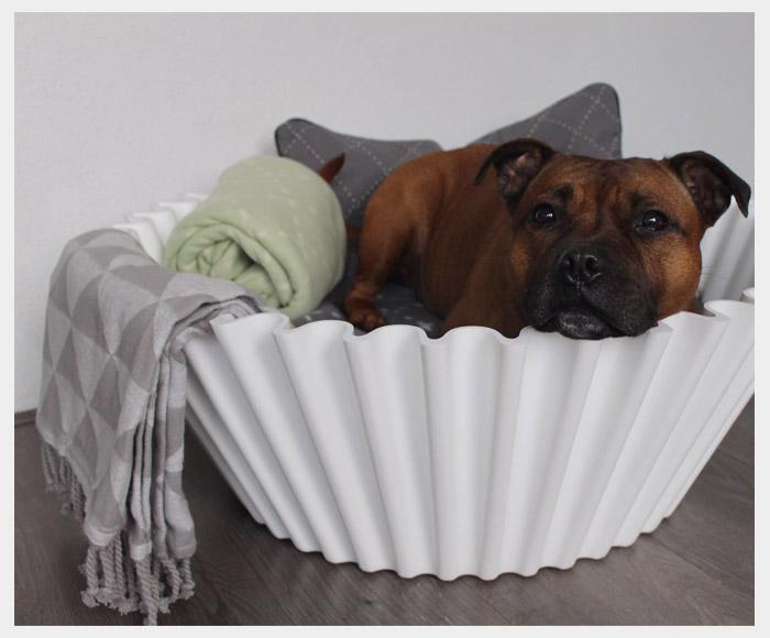 Happy customers - dog bed - sweet cake white 2